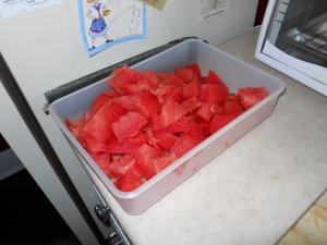 Yummy watermelon for me to eat!