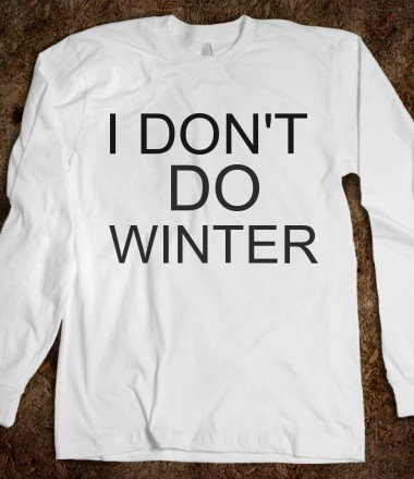 Found at: http://wanelo.com/p/3083708/i-don-t-do-winter-the-kay-designs