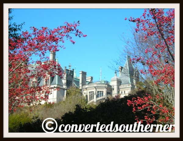 The Biltmore House in Asheville, NC. Looking up from the gardens.