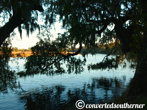 A low country river. October 2013