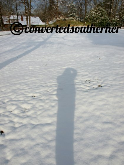 all bundled up and a self-portrait in shadow.