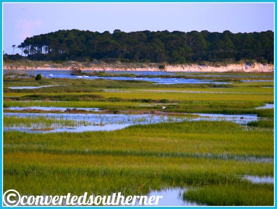 Overlooking the marsh from Harbor Island, SC to Hunting Island .