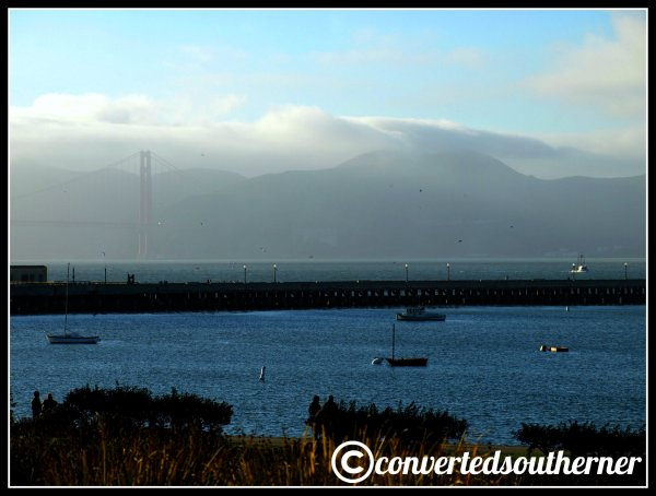 San Fransisco Bay and the Golden Gate Bridge from near fisherman's wharf.