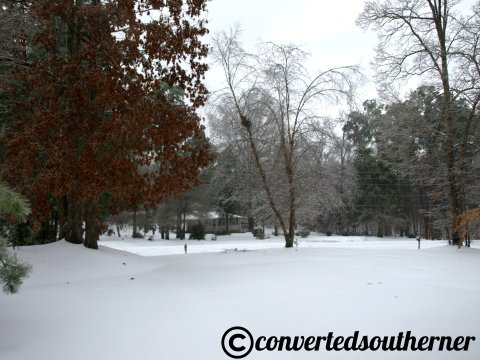 Southern Winter Wonderland