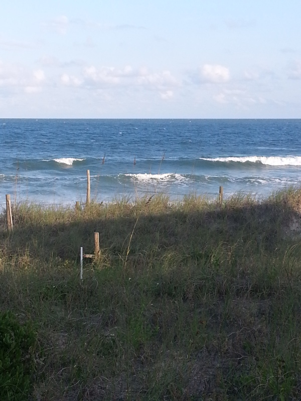 The Beach side of the Beach House